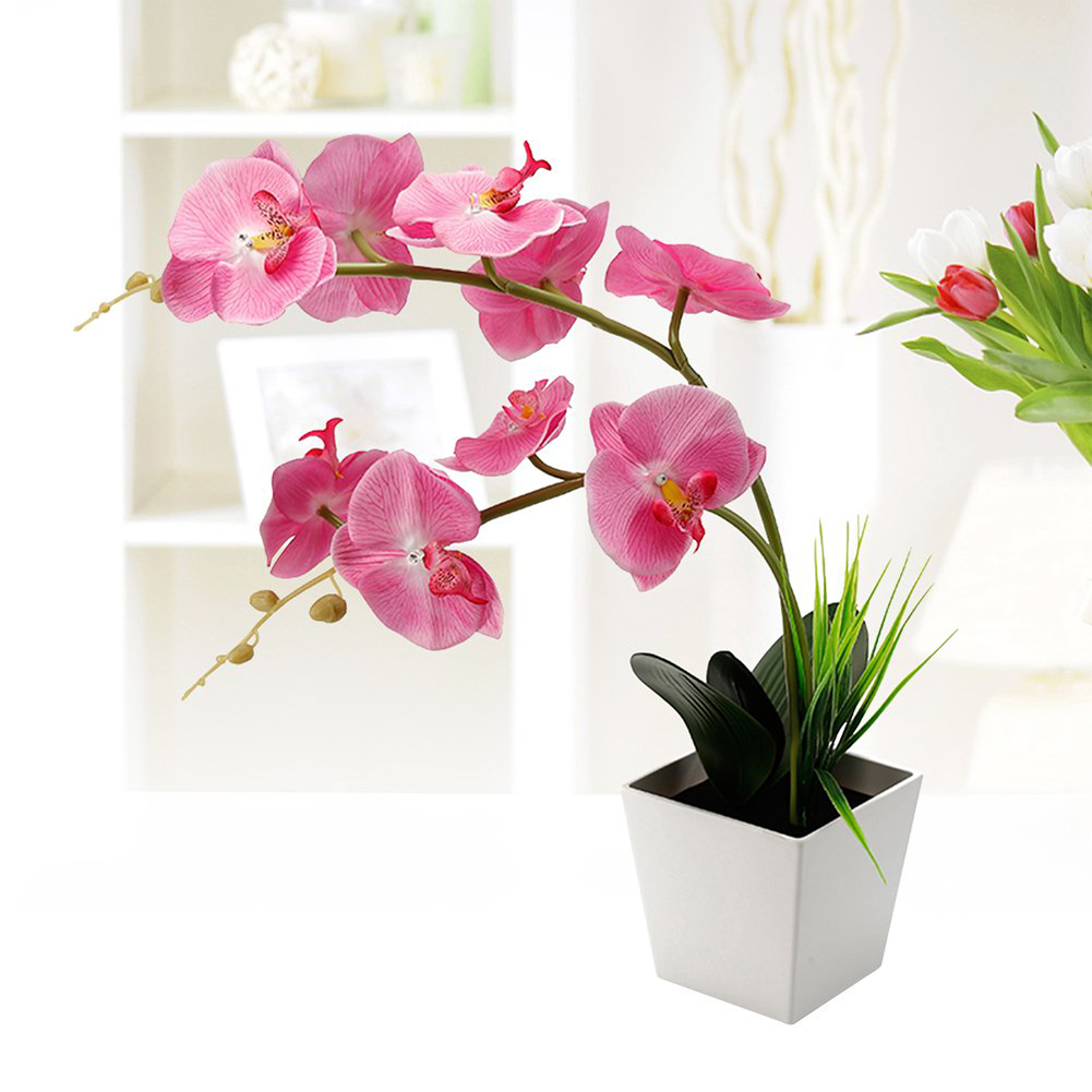 Led Lamps Blossom Energy Saving Orchid Flower Battery Operated Led Light Lighted Home Decoration Artificial Potted Arrangement Table We Have Won Praise From Customers