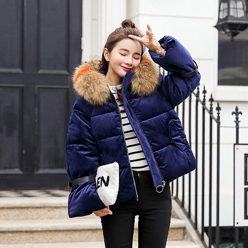 blue Vêtements Court Grand Manteau brown white Dames Veste Nouveau Petite Coton Col Chaud Black Fourrure De Épais pink gray C6xFwxq
