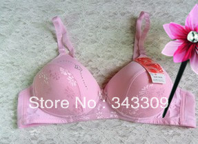 Embroidery push up  women underwear 34B-38B  sexy   bra set  free  shipping   massage