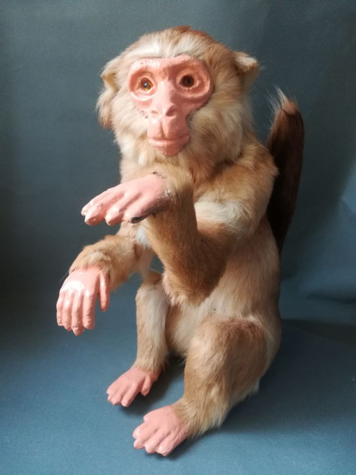 real life toy brown monkey model polyethylene&furs large 35x22x47cm model home garden decoration props gift h0572real life toy brown monkey model polyethylene&furs large 35x22x47cm model home garden decoration props gift h0572