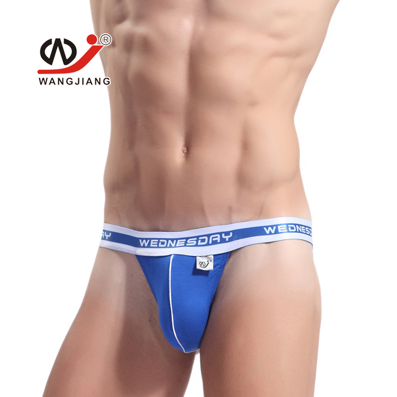 2017 New Style WJ Brand Gay Underwear One Week G-string Sexy Briefs  Men's Bamboo Fiber High Fork Small Briefs Male Underpants