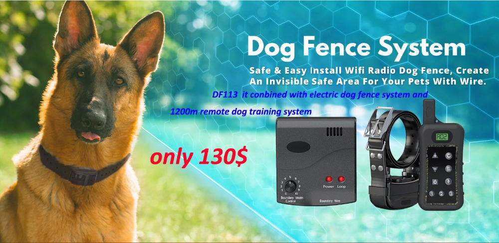 Remote Dog Training Collar Rechargeable And Waterproof Vibration ...