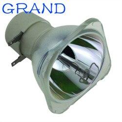 Zgodna żarówka projektora XX5050000500 dla VIVITEK DS234/DX255