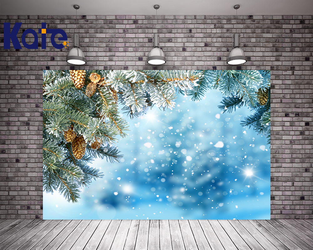 Kate Photo Studio Backdrop Photography Christmas Backdrops Blue Bright Background For Children Studio Photography retro background christmas photo props photography screen backdrops for children vinyl 7x5ft or 5x3ft christmas033
