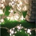 6 M 40 LED lâmpada3 * AA Battery-Operated Natal LEVOU Corda Flores de Pêssego flor de Cerejeira Luzes Do Partido Do Pátio Decoração do casamento