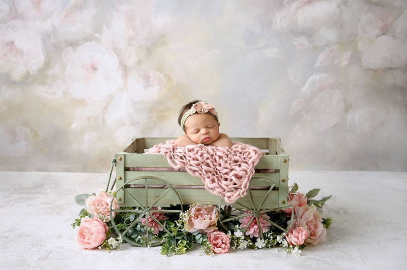 Newborn Photography Props Cart Baby Photography Personality Creative Modeling Car Baby Crib Accessories