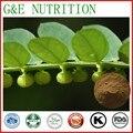 1000g Pérola grama/Sagina subulata/phyllanthus urinaria/Extract chanca piedra com frete grátis