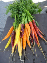 50 seeds/pack Bonsai Rainbow Carrot seeds Rare Chinese Vegetable Seeds-Healthy Organic Sugar Carrot seeds