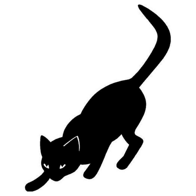 Image result for cat stalking