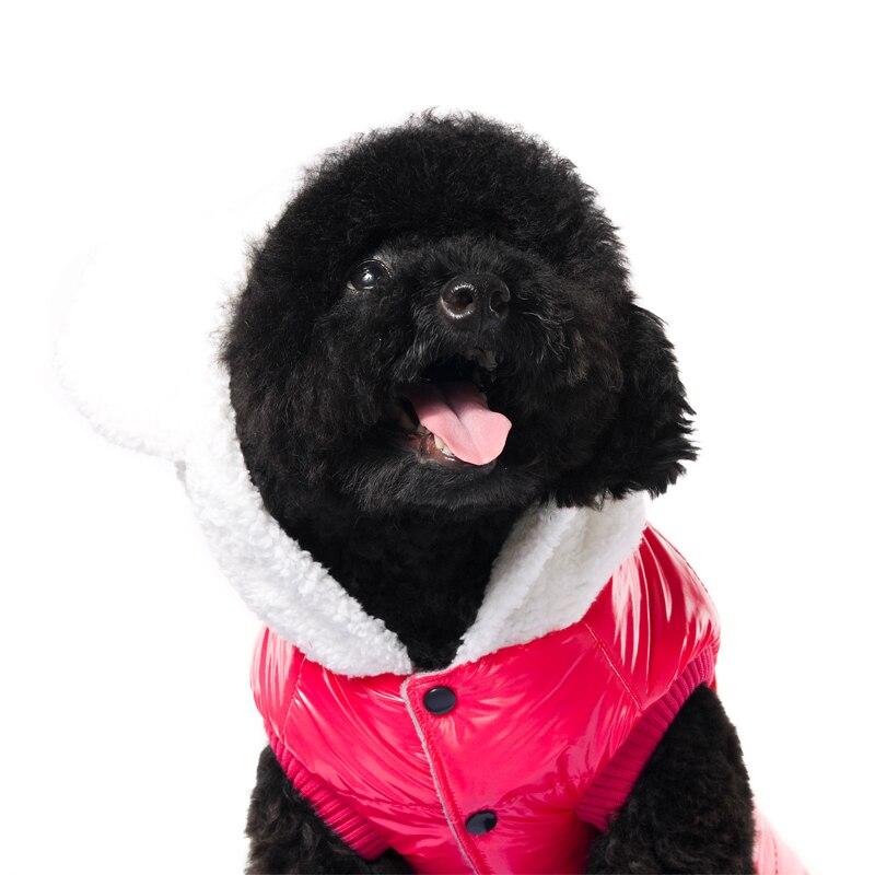 Նոր հագուստ WAGETON Fashion Dog հագուստի - Ապրանքներ կենդանիների համար - Լուսանկար 2