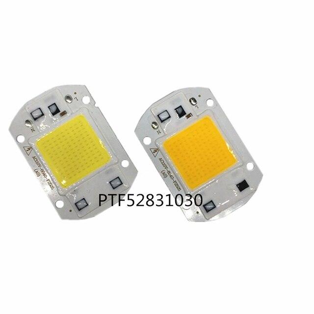 10PCS 20W 30W 50W LED Floodlight COB Chip light 110V 220V Input Integrated Smart IC Driver