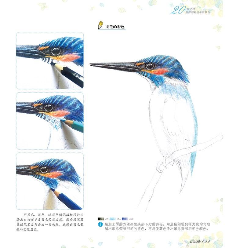Nova linha de desenho desenho A Lápis