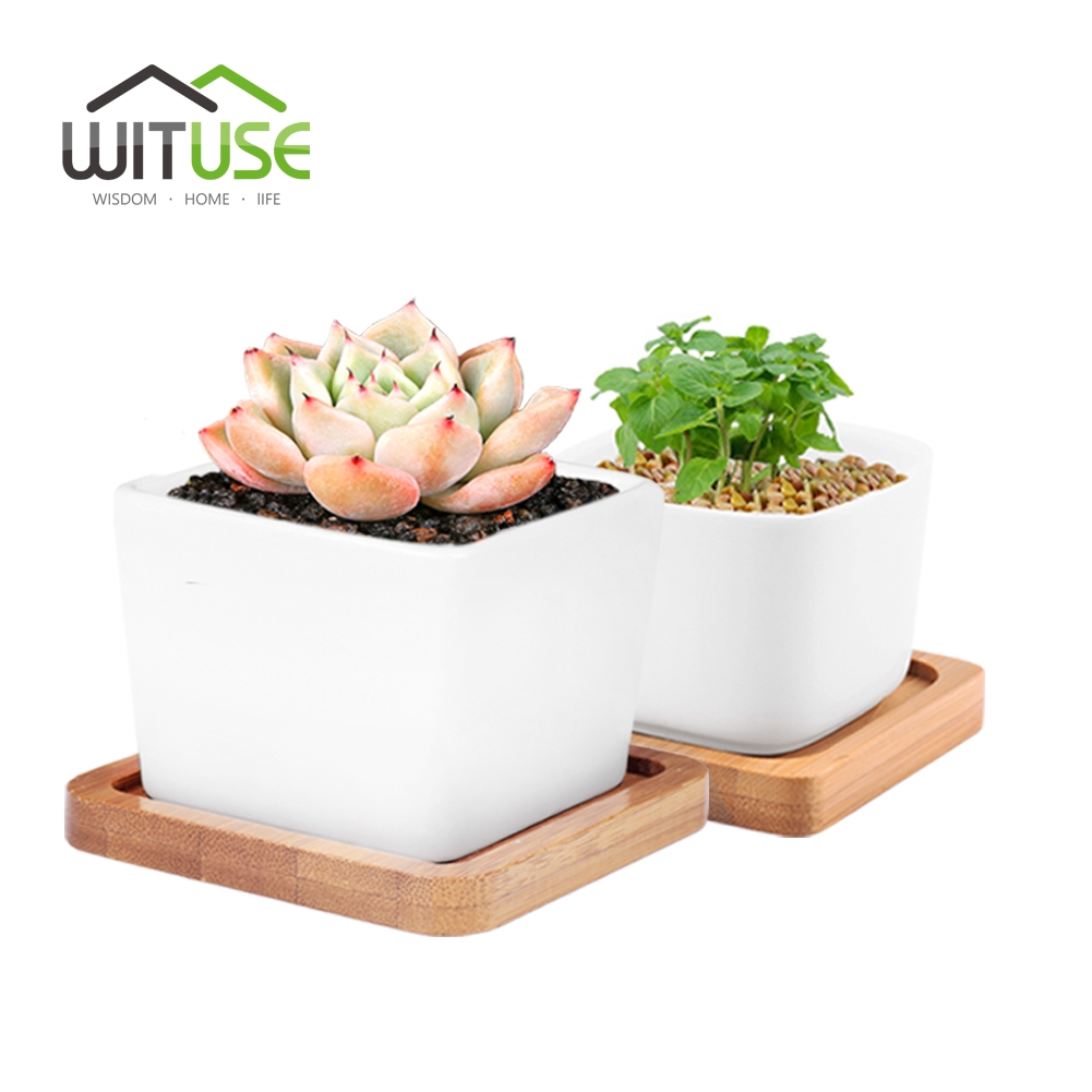 WITUSE S+L White Square Glazed Ceramic Succulent Planter Small Indoor Flowerpot Fern Plants Clay Garden Pot With Plant Pot Tray