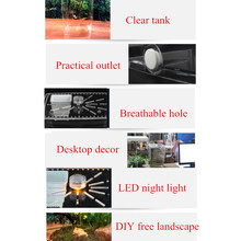 Acrylic Plant Pet Reptile Terrarium Feeding Tank Insect Snake Spiders Chameleon Breeding Boxes Cage Case House Transparent