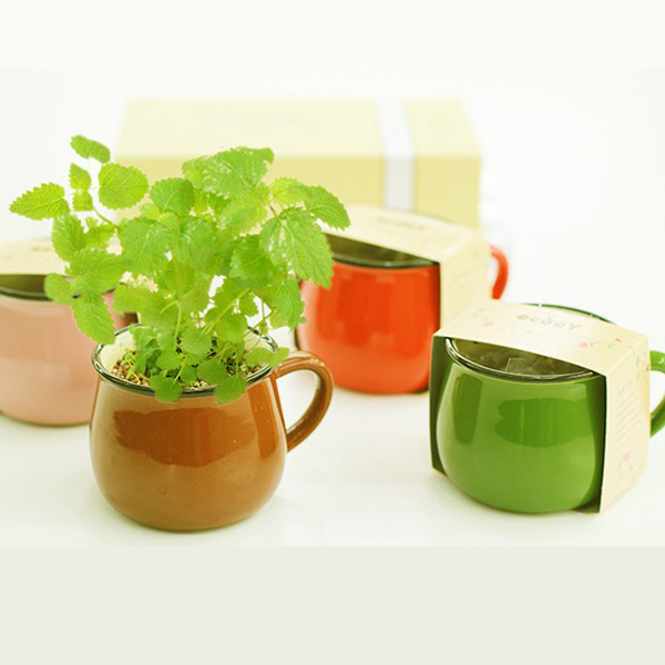 christmas gift desktop decor bonsai pot ceramic pot bellied cup vanilla potted plants mini flower