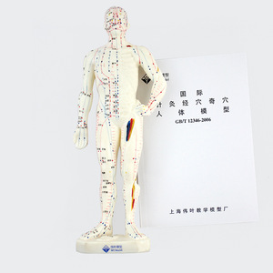 Image 5 - 26 ซม.ทางการแพทย์จีนแพทยศาสตร์Meridiansการฝังเข็มMoxibustionรุ่นการฝังเข็มจุดMannequinฝังเข็มชุด