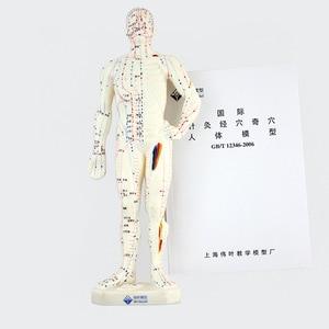 Image 5 - 26 センチメートル医療中国医学経絡鍼灸モデル経穴マネキン鍼モデル