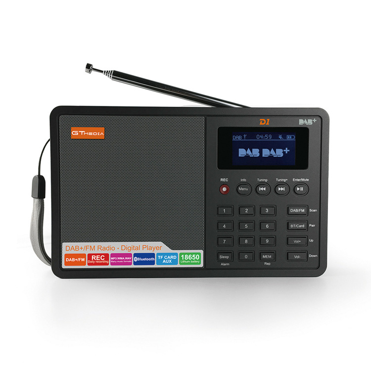 Digital FM Radio Digital linternet radio portable fm DAB DAB+ Radio Mini TF bluetooth Speaker RADD1 стоимость