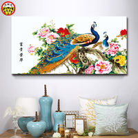 DIY Digital Oil Painting Gallery Large Living Room Decorative Pendant Large Size Color Peacock Chinese Style
