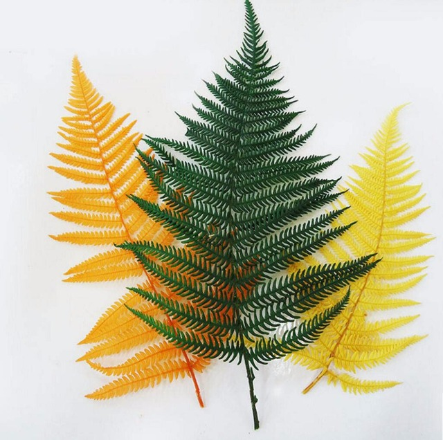 10pcs preserved green orange yellow fern leaf leaves for bouquet