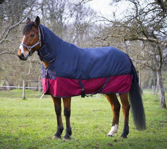 Horseback Riding Accessories Horse Racing Clothing Warm Cotton Rugs Detachable Equipment Equestrian Supplies