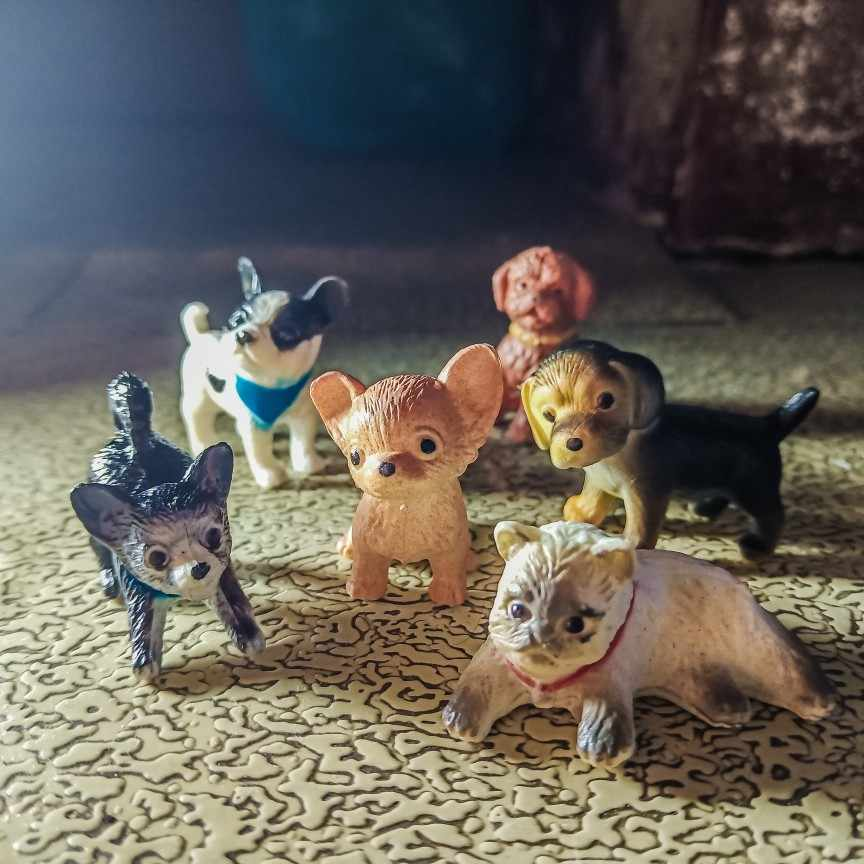 6pcs Simulation mini Cat dog animal model small plastic Patrol figures figurine Decoration accessories Gift For Kids toy Y40