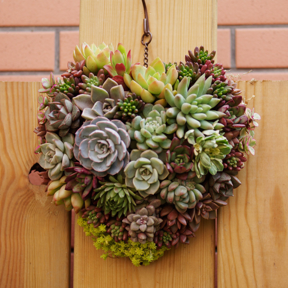 Sweetheart Hanging Flower Basket Wall Mounted Vertical Gardening Pot Planting Bag Living Indoor Planter In Baskets From Home Garden On