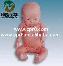 BIX-FT2 Full-Term Infant Newborn Care Manikin  MQ065