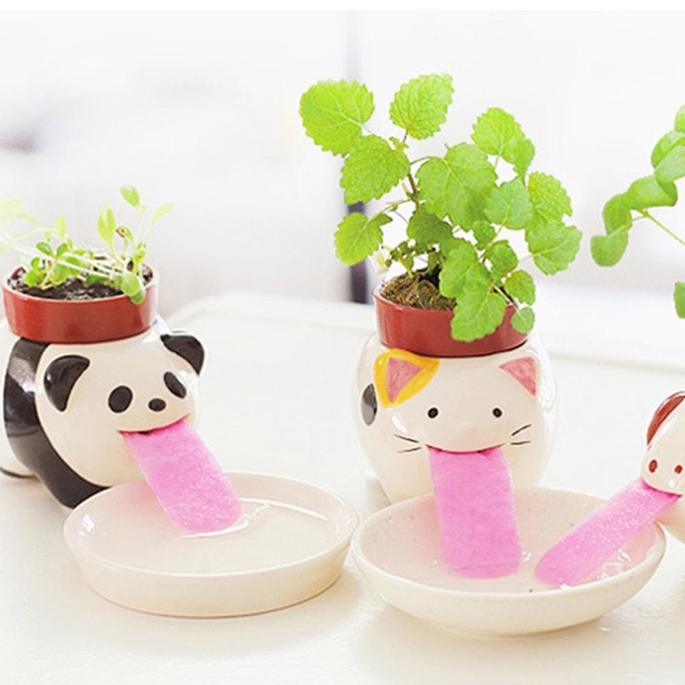 Small Mini Potted Office Desktop Potted Plants Cute Animal Shape Micro Landscape Potted Plants Plant Decoration