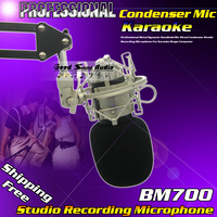 Professional Wired Dynamic Studio Recording Mic BM700 Condenser Microphone For Karaoke Computer PC Music Create With