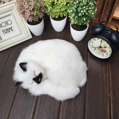 Adorável gato dormindo modelo 24x20 cm, polietileno