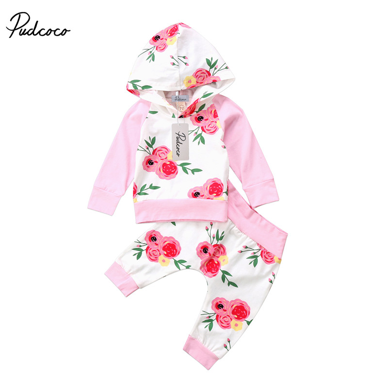 0 to 18M Toddler Newborn Baby Girls Clothes High Quality Long Sleeve Tops +Hooded Long Pants 2pcs Outfits Baby Clothing Set