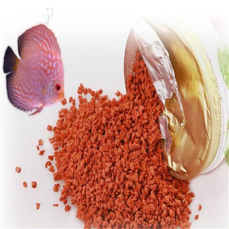 Kingccpet 2019 Hot Sale Tetra Bits Completes Discus Granules Tropical Fish Food Sink For Angelfish Guppy Discus Fish Food Feeder