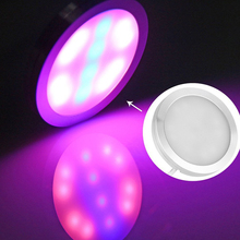 DC 6V 4W red blue USB powered LED Grow Light for plants flowers seeding vegetable indoor Photosynthesis Lamp Promote Growth Bulb