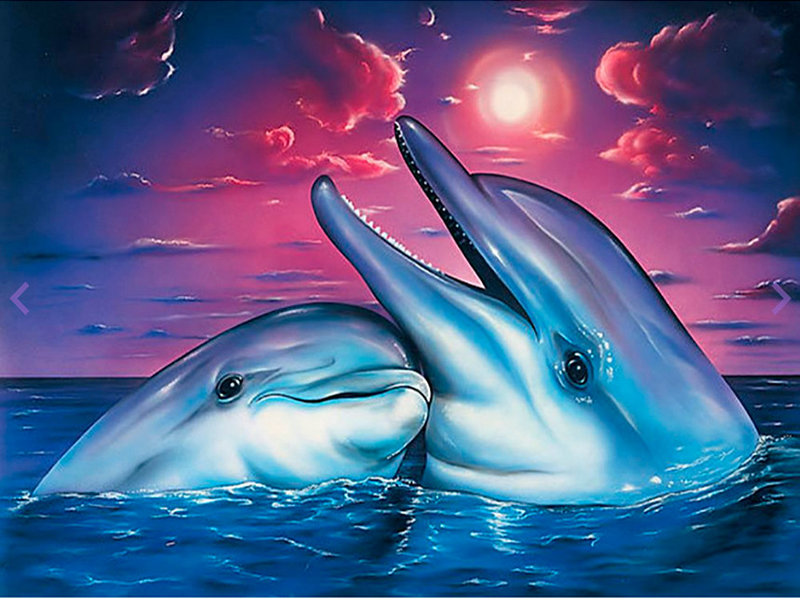 5D DIY Diamond Painting Cross Stitch kit Full Diamond embroidery dolphin lovers round Diamond mosaic picture home Decorative