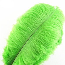 Wholasale  Apple Green Ostrich Feathers for Crafts 15-70cm Carnival Costumes Wedding Decoration Jewelry Making