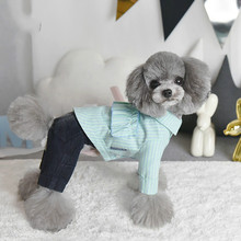 Pet Dog Cat Clothing Hoodie Clothes for Little Dogs  Schnauzer Puppy Warm Ropa Gato