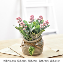 Small Fresh Simulated Plant Potted Ornaments Multi-flesh Fake Flowers Landscape Home Living Room Green