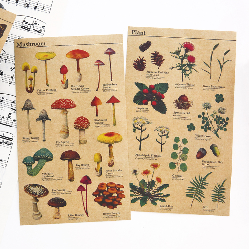 36 pcs/Lot Retro Kraft paper sticker for Learning fruit vegetable plant insect animal Vintage Stationery School supplies F132