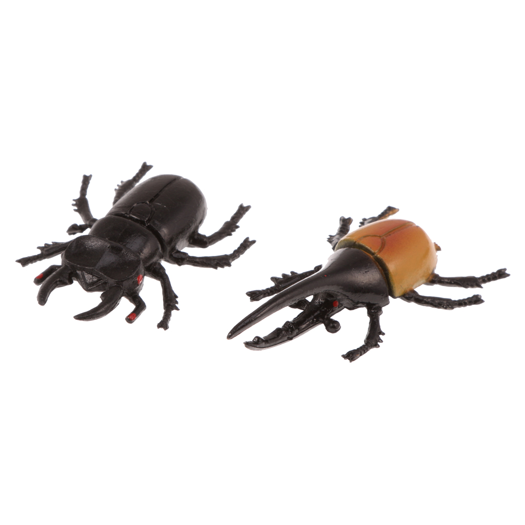 1 Set of 10PCS PVC Vivid Beetle Insect Model Animal Kids Room Decor Science Educational Party Favor Props Fun Toy Gift
