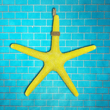 33cm Resin starfish wall act the role of pendant The Mediterranean decoration