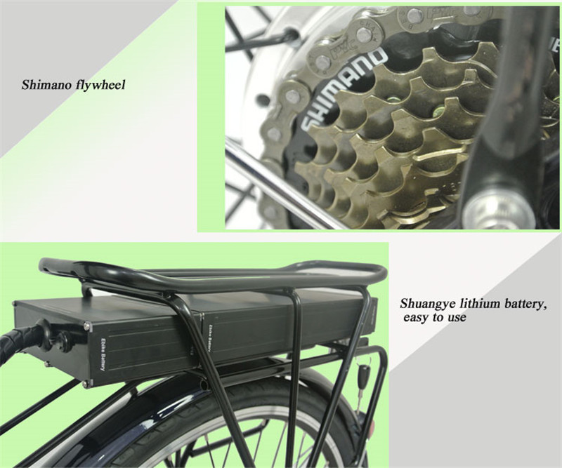 electric bikes for adults (1)