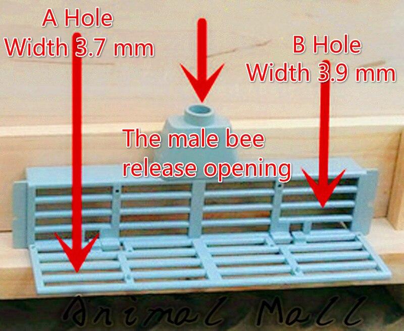 Инструменты пчеловодства Пчела Против Побег Коробка Preventionqueen Пчел Бежать Пчеловодства Инструменты Улей Аксессуары