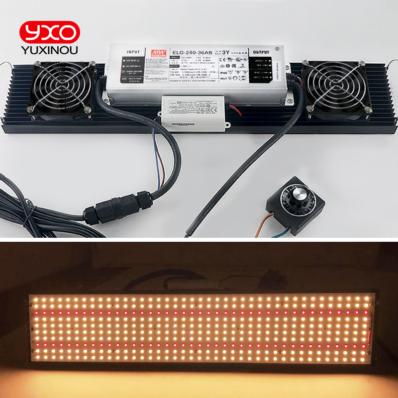 Brightness 300w Led Grow Light Quantum Board Full Spectrum