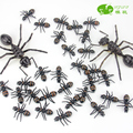 Ant plastic artificial animal model lyrate toy ants film props