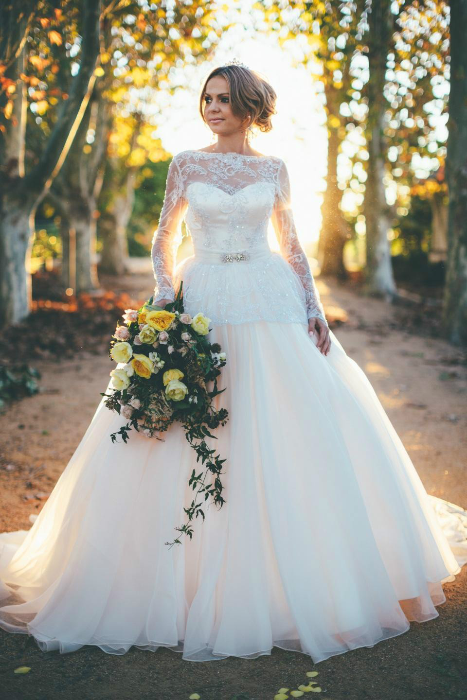 Magnificent Plus Size Victorian Wedding Dresses Images - All Wedding ...