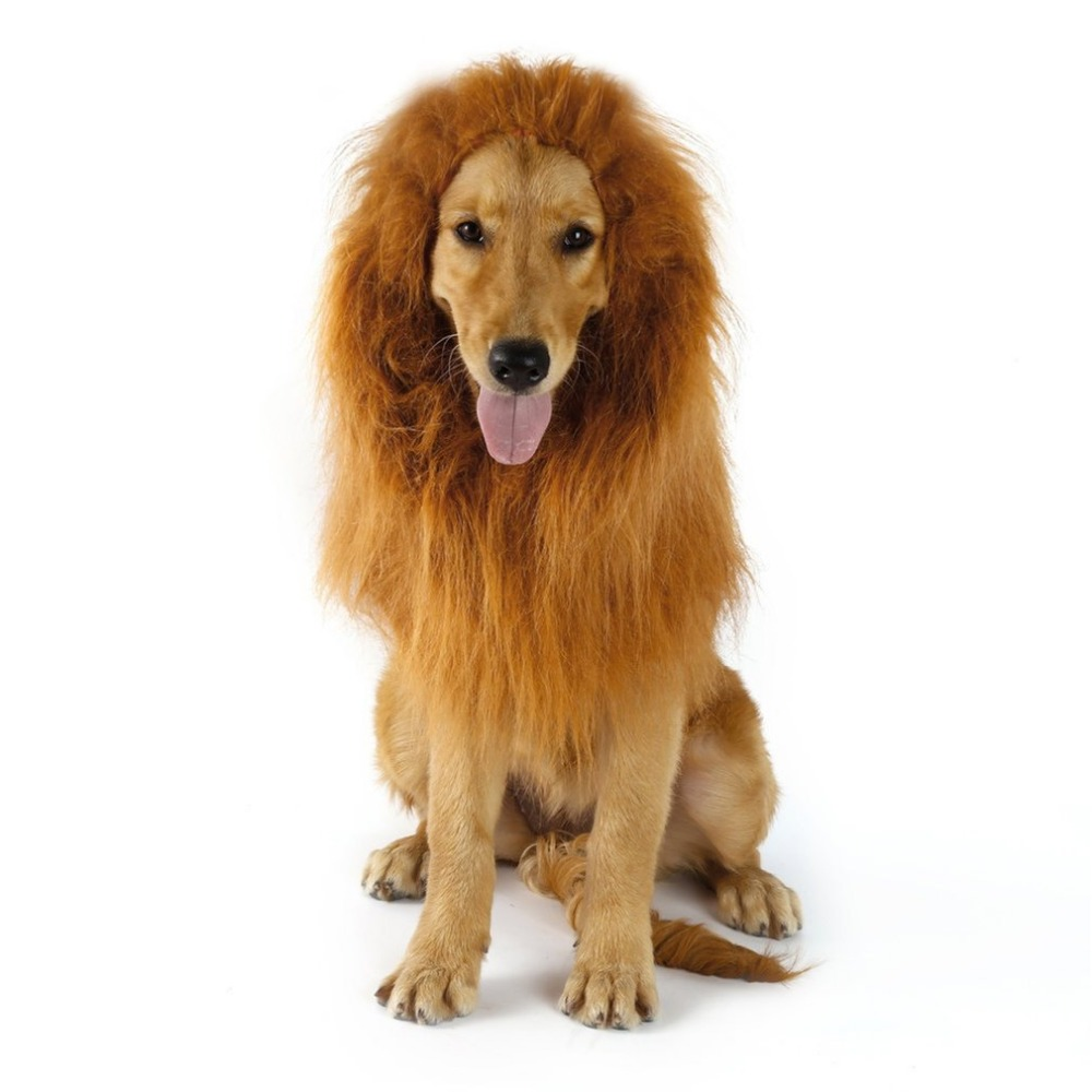 Dog Accessories Pet Products Official Website Soft Synthetic Hair Curly Wig Cap Pet Dog Puppy Afro Wig Curly Hair Wavy Syethetic Hair Pigtail Braid Fancy Dress Up Pl0129