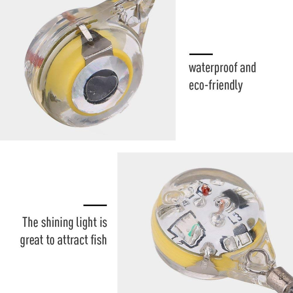 fishing led (4)