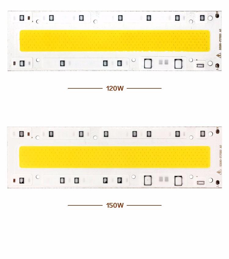 IC-YXT-Chip-p1-12+1