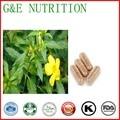 100% Pure plant extract Damiana capsules  500mg x 100pcs